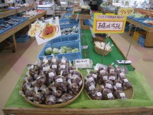 春物野菜・果物多数出荷中!!-写真6