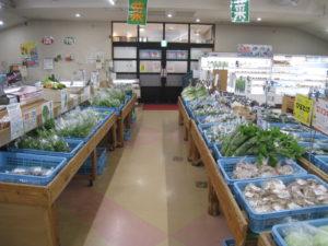 春物野菜・柑橘類多数入荷中!!
