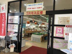 古賀市キャンペーン(paypay払い)第2弾のお知らせ!!-写真2